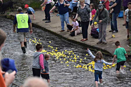 Bamptonh Duck Race